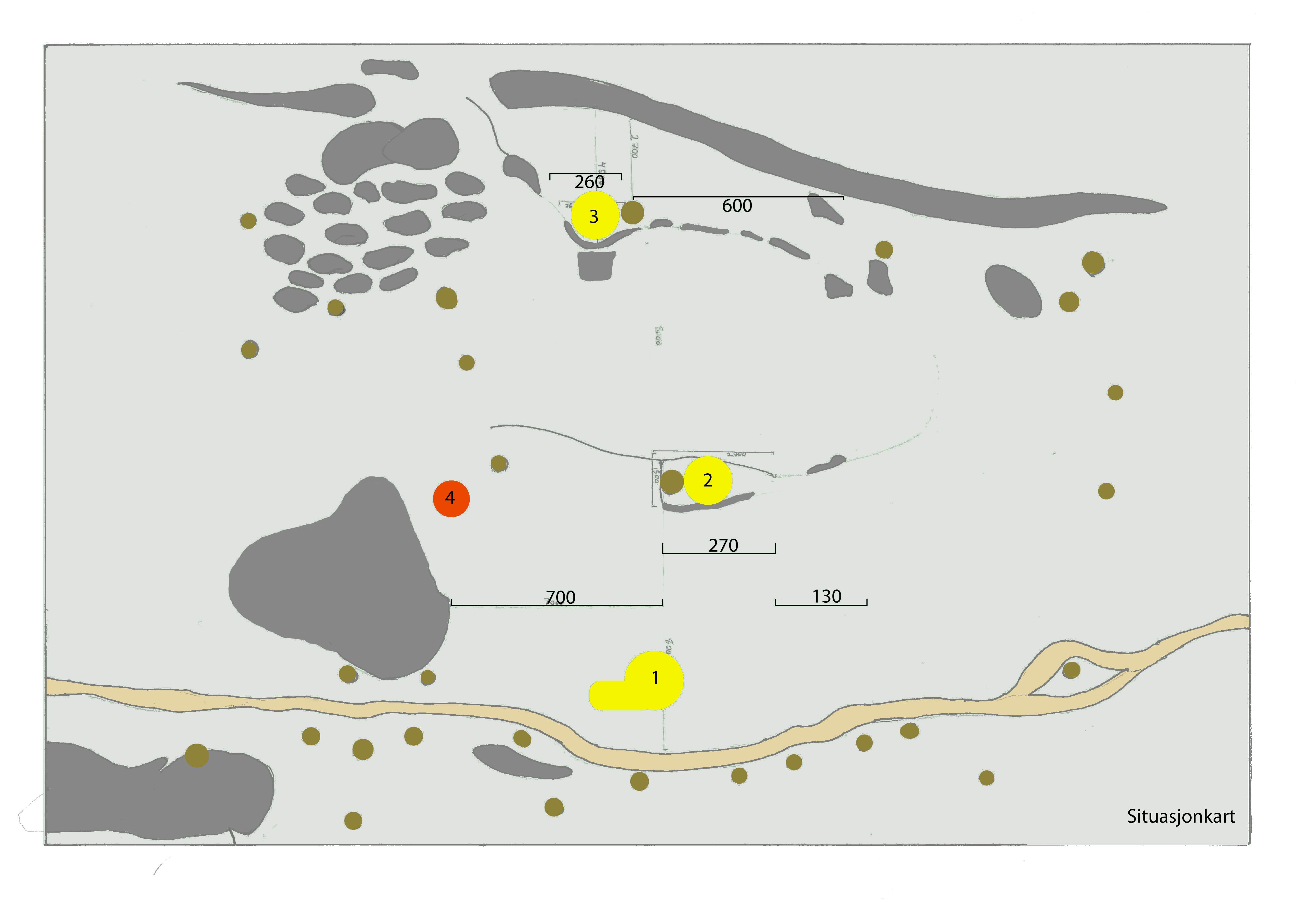 skogssituasjon (ovenifra)plakat med mål og punkter